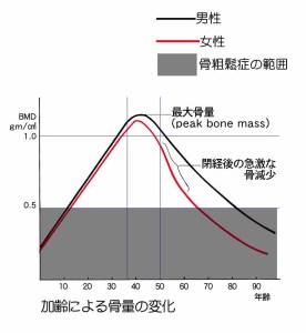 骨粗鬆症グラフ